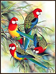 Parrots 5D Diamond Painting DIY Embroidery Cross Stitch,friendGG Arts Craft Full Square Diamond for Canvas Wall Home Stickers Gift Picture Decor (Multicolor)