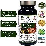 Detox Plus | Adelgazante Drenante para Desintoxicar Hígado Limpiar los Intestinos y Bajar de Peso Reducir Glucosa y Colesterol Mejora Sistema Inmunológico Tracto Urinario Sano Combate Estreñimiento