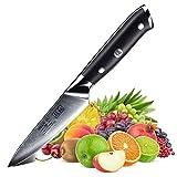 SHAN ZU Damast Schälmesser Obst und Gemüsemesser Küchen Messer Klein 67 Schichten Damaszener Messer mit G10 Griff