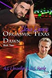 Slow Dance (Orgasmic Texas Dawn Book 3)