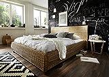 SAM Rattanbett 140x200 cm Ngan 9134, in dust, Bett in natürlichem Look, in ausgefallenem Design, angenehmer Liegekomfort