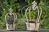 KRONE 2er-Set 41 und 31 cm hoch Blumentopf Rankhilfe lackiertes Eisen