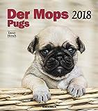 Der Mops 2018 - Das Orginal von Knesebeck, Hundekalender, Tierkalender, Posterkalender, Wandkalender - 30 x 34 cm