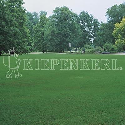 Kiepenkerl 4000159801066 RSM 2.2.2 Gebrauchsrasen extreme Trockenlagen 10 kg von Kiepenkerl auf Du und dein Garten