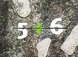 Bart van Raaij Führer 5 + 6 Boulderführer West/Nord Fontainebleau