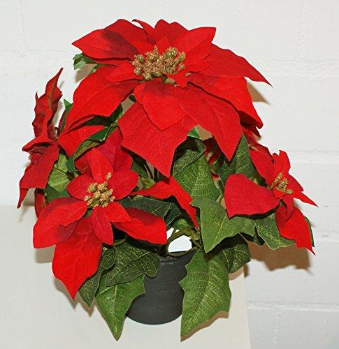 Christstern Weihnachtsstern künstlich Dekopflanze rot H: 34 cm