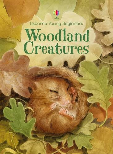 woodland-creatures-young-beginners