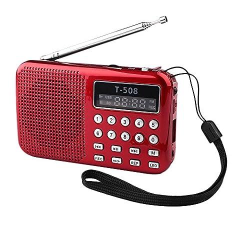 Cewaal Portable FM Radio Lautsprecher Universal Stereo TF Karte Digital Lautsprecher