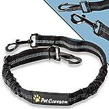 PetCareson ISOFIX-Anschnallgurt für deinen Hund im Auto I Mit Doppel Ruck-Dämpfer I Elastisch I Hundegurt fürs Auto für kleine und große Hunde I Hunde-Sicherheitsgurt für Auto-Rückbank