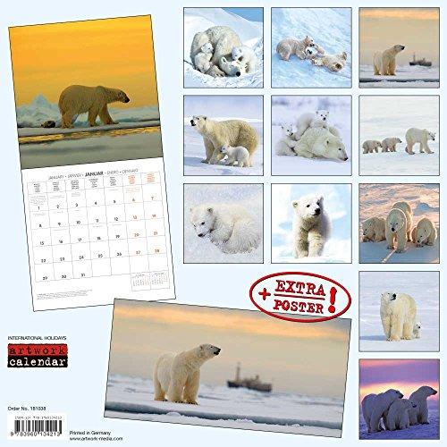 Eisbären 2018: Kalender 2018 (Artwork Edition) (Nordpol-film)
