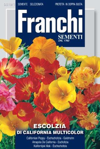 Franchi Pavot de Californie Famille Eschscholzia