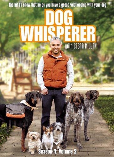 dog-whisperer-with-cesar-millan-season-4-v2-dvd-region-1-us-import-ntsc
