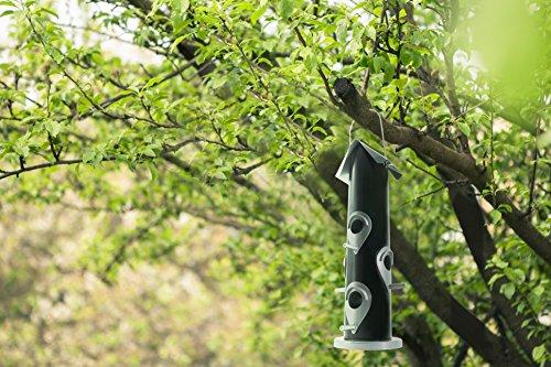 Vogelfutterspender zum Aufhängen