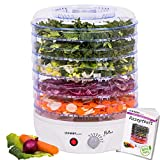 Fruit Dehydrator with Temperature Control - 240 W