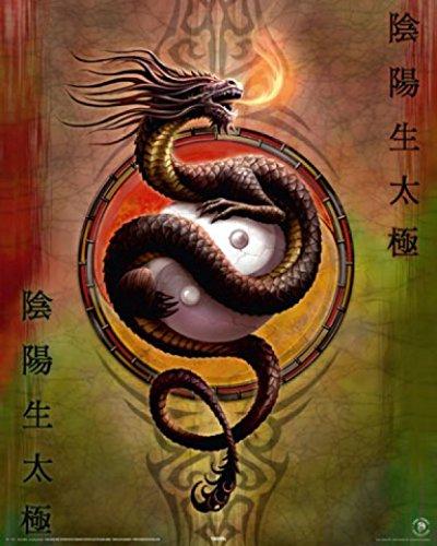 Set: Gothic, Protettore del Drago Yin Yang, Anne Stokes Mini Poster (50x40...