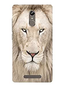 TREECASE Designer Printed Soft Silicone Back Case Cover For Gionee S6S