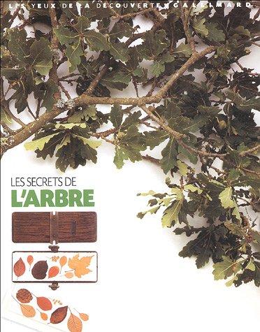 """<a href=""""/node/13174"""">Les secrets de l'arbre</a>"""