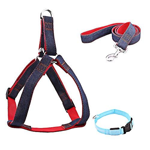 TTLIFE Set di 3 Eccellente Regolabile Cintura di sicurezza per Cani e Guinzagli del Cablaggio con il Collare di sicurezza LED per Piccole / Medie / Grandi cani Taglia L / XL / XXL (L)