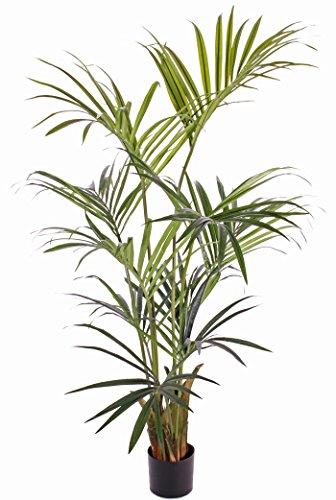 artplants Set 2 x Künstliche Kentia Palme Paige, 11 Wedel, grün, 180 cm – Kunstpalme/Deko Palme