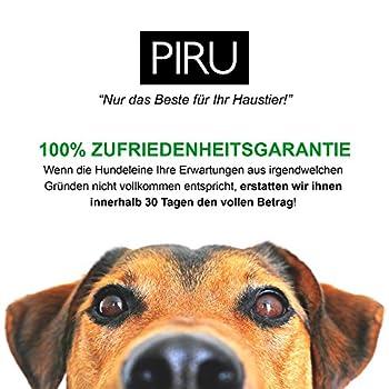 Piru Reflektierende Hundeleine - Nylon Geflochten - Kaufest - Gepolsterte Handschlaufe - Schwarz - 150cm 6