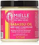 Best Organic Products - Mielle Organics Babassu Oil Mint Deep Conditioner Review