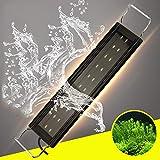 RONGFANGGUO LED Acquario Luce Regolabile luminosità Pesci Serbatoio Illuminazione impianto con staffe allungabili,12W