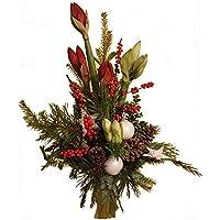 Kölle Weihnachtsdeko.Suchergebnis Auf Amazon De Für Weihnachtsdeko Blumen Pflanzen