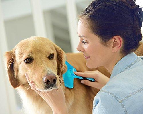 Zoom IMG-2 dakpets autopulente spazzola per cani