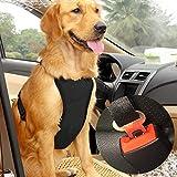 Imbracatura di Sicurezza per Cani con Cintura di Sicurezza per la Maggior Parte delle Auto, con Cinghia da Viaggio Regolabile, Leggera e Confortevole, Colore: Rosso