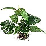 Beito Künstliche Kunstpflanze für Aquarien, Grün