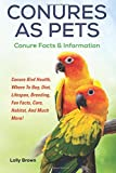 Conures as Pets: Conure Bird Health, Where to Buy, Diet, Lifespan, Breeding, Fun Facts, Care, Habitat, and Much More! Conure Facts & Information