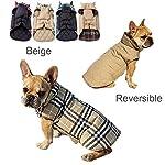 IREENUO Dog Reversible Plaid Coat Autumn Winter Warm Cozy Waistcoat British Style Dog Padded Jacket for Small Medium… 17