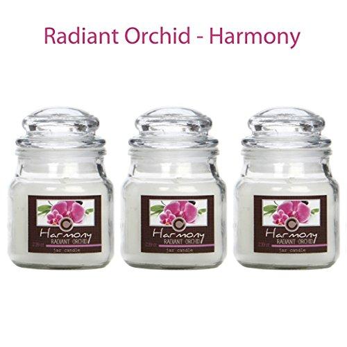 Kerze Duftenden Duft-Öl (HOSLEY Set von 3strahlend Orchidee Lagen duftendes, je 3Oz, jar Kerze. Wir Hand POUR Unsere Kerzen mit eine hohe Qualität Wax Blend mit ätherischem Öl. Ideal für Spa, Aromatherapie, täglichen Gebrauch O9.)