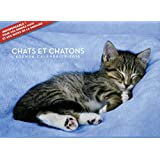 L'agenda-Calendrier Chats et chatons 2016