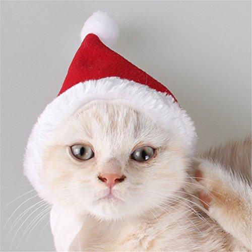 Kostüm Katze Kopfbedeckung (Weihnachtsmütze Haustier Kopfbedeckung Hut Schals Anzug niedlichen Hund Katze Haustier Lieferungen Stillshine (rot)