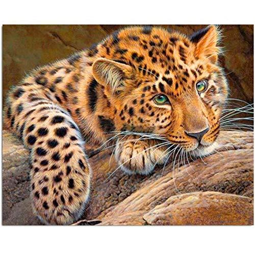 Diamant Stickerei Malerei 3D Vollbohrer Diamant Mosaik Kreuzstich eingefügt Malerei DIY Home Decor Craft Tier-50x60 cm