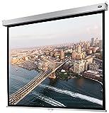 celexon manuell ausziehbare Rollo-Beamer-Leinwand Professional Plus - 240 x 180 cm - 4:3 - Gain 1,2 - Full-HD und 4K