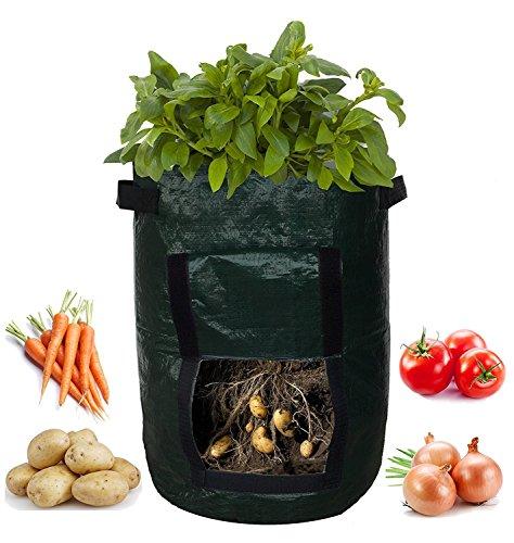 Doolland Lot de 2 sacs de culture pour pommes de terre, sac de culture de légumes, double couche en tissu non tissé respirant avec poignées de sangle 10 gallon Noir