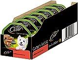 Cesar Hundefutter Nassfutter Gartenvielfalt Rind und Gemüse, 7 er Pack, (7 x 2 Schalen x 150 g)