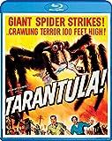 Tarantula [Edizione: Stati Uniti]