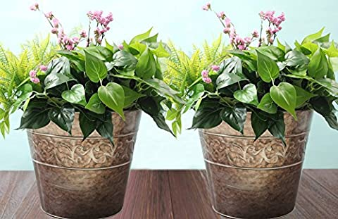 Plant Containers Garden Planters Flower Pot, Gardening Urn Pots, Rose Gold Tin 13 inch Set 2
