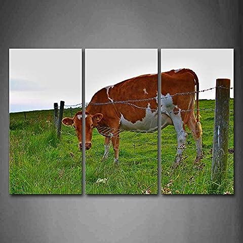 Support de vache Near Clôture sur Prairie Décoration murale Peinture