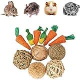 Generic Juego de 11 piezas de juguete para conejillos de Indias, juguete para mascotas, juguete para animales pequeños