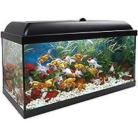 ICA KDI100 Kit Aqua-Led Pro 100 con Filtro Interior