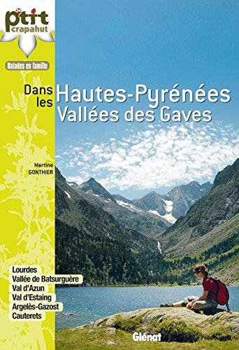 Hautes-Pyrénées : vallées des Gaves: 28 itinéraires par Martine Gonthier