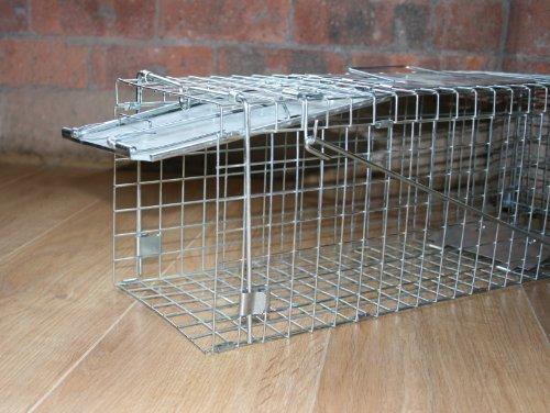 Folding Feral Cat Rabbit Squirrel Rodent Folding Trap-Pliage de lapin sauvage de chat rongeurs Ecureuil Piège