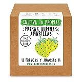 Garden Pocket - Kit cultivo FRESAS AMARILLAS