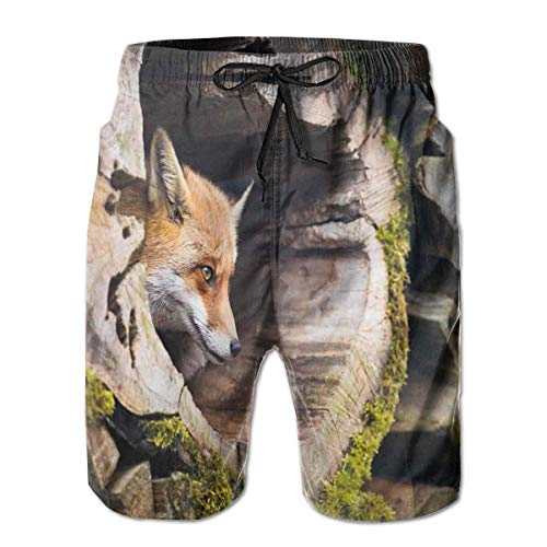 jiger Men Swim Trunks Beach Shorts,True Fox Vulpes Inside Wood Log Exotic Furry Creature Wildlife Nature Animal Design Tan,Quick Dry 3D Printed Drawstring Casual Summer Surfing Board Shorts L