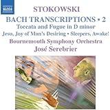 Bach-Transkriptionen Vol.2