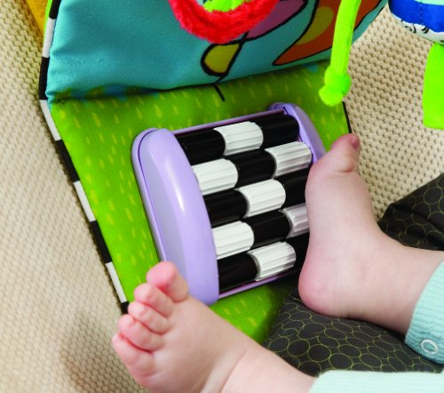 Taf Toys 11465 Auto Aktivitätsspielzeug für die Fahrt unterwegs -